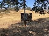 27102 Morgan Valley - Photo 14