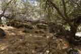 30150 Yosemite Springs - Photo 25