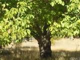 3640 Lake View Estates - Photo 24
