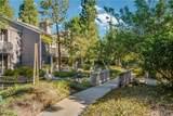 25625 Pine Creek Lane - Photo 25