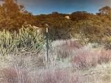 0 Ridge Crest Trail - Photo 7