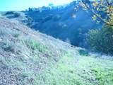 3567 Camino Real - Photo 1