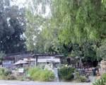 501 Quail Gardens Drive - Photo 2