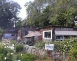 501 Quail Gardens Drive - Photo 3
