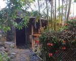 501 Quail Gardens Drive - Photo 7