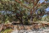 1833 White Oak Dr - Photo 18