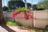 3829 Camino Lindo - Photo 9