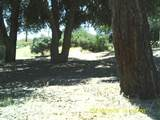 39177 Old Highway 80 - Photo 4