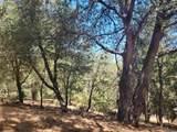 Pine Hills Rd - Photo 1