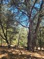 Pine Hills Rd - Photo 3