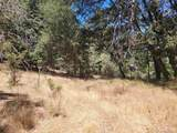 Pine Hills Rd - Photo 6
