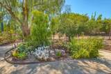 24517 Rutherford Rd - Photo 39