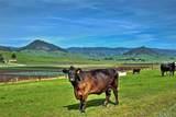7515 Los Osos Valley Road - Photo 16