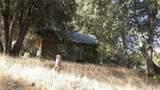 44546 Road 628 - Photo 15