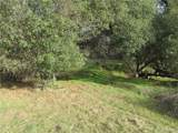 19390 Pine Creek Rd. - Photo 4