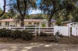 17002 Olive Grove Lane - Photo 2