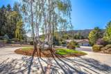 37274 Ironwood Drive - Photo 6