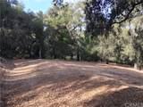 13300 Santa Ana - Photo 15