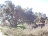 5 Willow Canyon - Photo 2