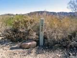 8757 Desert Willow - Photo 4