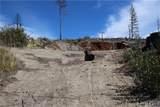 11791 Gifford Springs - Photo 5