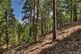 199 Cedar Ridge - Photo 16