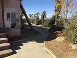 24420 Juniper Springs Road - Photo 4