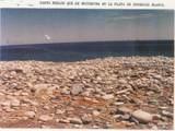 Baja. Mexico - Photo 19