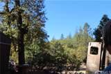 13065 Black Oak Road - Photo 44