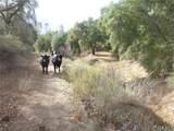 0 Vineyard Canyon (Parcel 29) - Photo 14