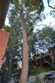348 Prospectors Road - Photo 6