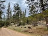 0 Bull Creek - Photo 21