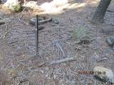7245 Yosemite Park - Photo 15
