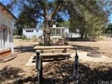 30816 Chihuahua Valley Road - Photo 43