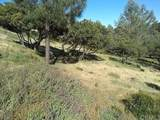 10161 El Capitan - Photo 2