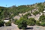 0 Sandia Creek - Photo 21