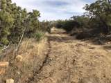 Lot 004 High Country Trl. - Photo 5