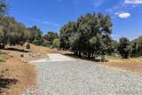 28707 Top Of The Pines Ln - Photo 40