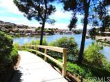 24311 Canyon Lake Drive - Photo 15