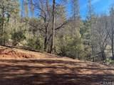 0 Bull Creek - Photo 12