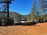 0 Bull Creek - Photo 15