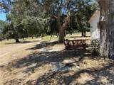 30816 Chihuahua Valley Road - Photo 14