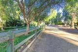 5 Urbino - Photo 38