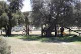 3757 La Posta Truck Trail - Photo 10