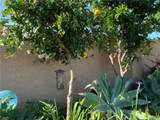 16842 Leafwood Circle - Photo 46