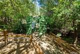 29305 Modjeska Canyon Road - Photo 70