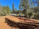 0 Bull Creek - Photo 5