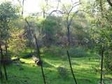 0 Richardson Springs - Photo 8