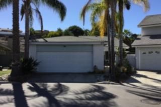 3313 Vivienda, Carlsbad, CA 92009 (#160065025) :: The Marelly Group | Realty One Group