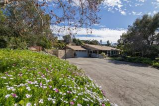 1645 Dorothea Ave, Fallbrook, CA 92028 (#170009039) :: The Marelly Group | Realty One Group